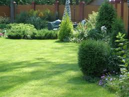 Рулонный газон. Посев травы